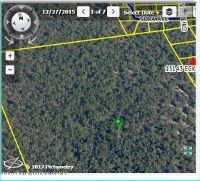 Home for sale: 100 Snowlark Avenue, Brooksville, FL 34614