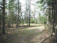 Home for sale: Lots 4&5 Skunk Creek Rd., Rhinelander, WI 54501