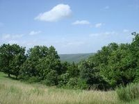 Home for sale: Tbd Whitetail Crossing Lots, Walnut Shade, MO 65771
