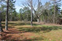 Home for sale: Tree Farm Rd.- Mount Olive, Melbourne, AR 72556