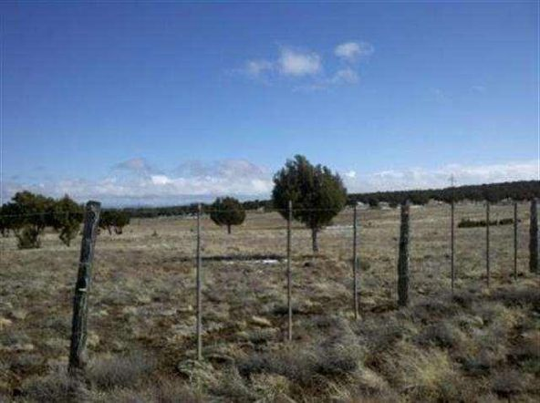 21 Acres Turkey Lake Rd., Show Low, AZ 85901 Photo 14