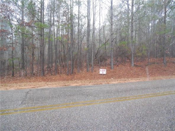8 Lake Point Rd., Eclectic, AL 36024 Photo 1