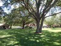 Home for sale: 7435 N.W. 44th Ln., Ocala, FL 34482