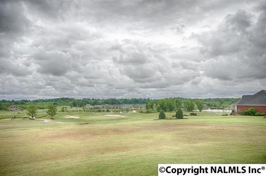 23802 Piney Creek Dr., Athens, AL 35613 Photo 37