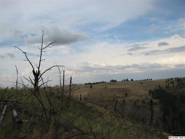 Sec34 Twp 10 Range 42 Allen Land, Pomeroy, WA 99347 Photo 4
