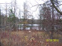 Home for sale: Lot On Surprise Lake, Crandon, WI 54520