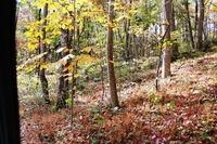 Home for sale: Parcel B Fan Mountain Rd., Covesville, VA 22931