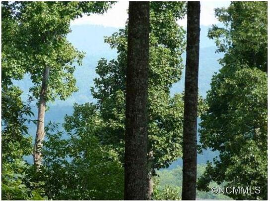 515 Hagen Dr., Hendersonville, NC 28739 Photo 1
