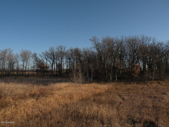 County Rd. 138, Parkers Prairie, MN 56361 Photo 19