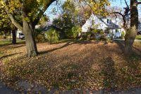 Home for sale: Lot 1 Madison Avenue, Saint Charles, IL 60174