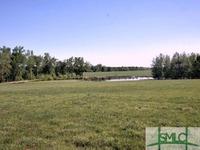 Home for sale: 284 Jones Rd., Keysville, GA 30816