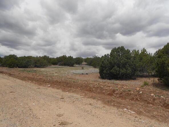4650 W. Dillon Wash Rd., Prescott, AZ 86305 Photo 5