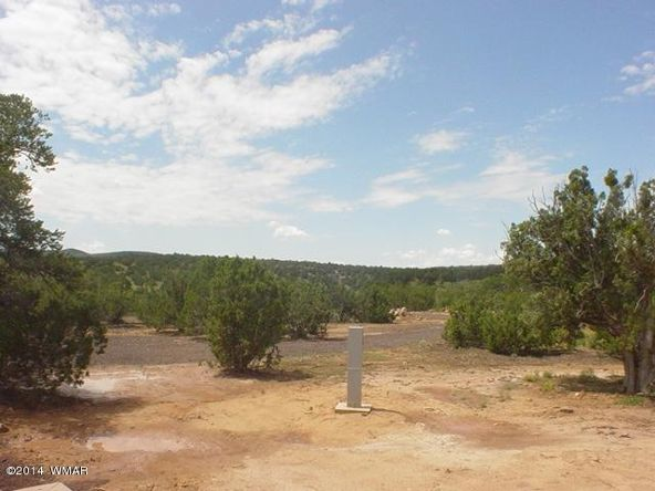 1a N. 8690, Concho, AZ 85924 Photo 33