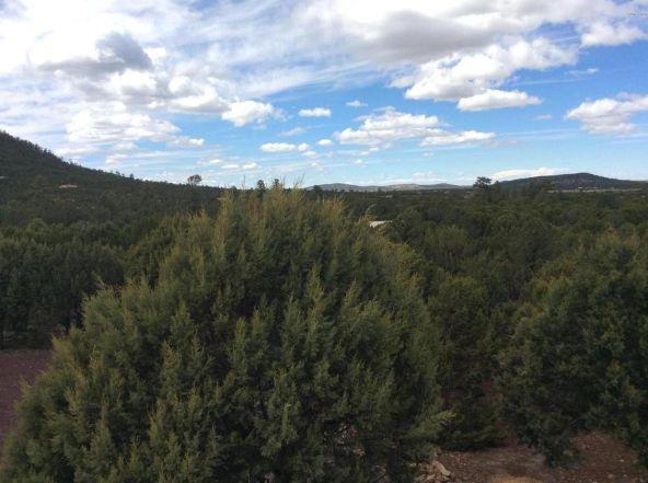 3398 County 4 Rd., Vernon, AZ 85940 Photo 41