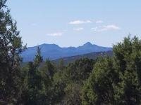 Home for sale: 4042 Hillside Rd., Ash Fork, AZ 86320