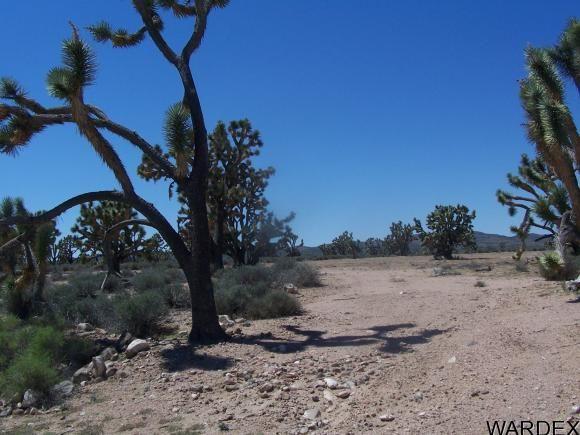 26865 N. Verde Rd., Meadview, AZ 86444 Photo 7