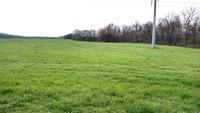 Home for sale: 0 Murfreesboro Rd., College Grove, TN 37046