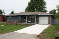 Home for sale: 333 Stephanie Dr., Gassville, AR 72635