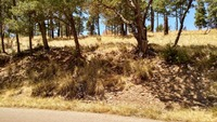 Home for sale: Lot 4 Blue Grouse Ln., Alto, NM 88312