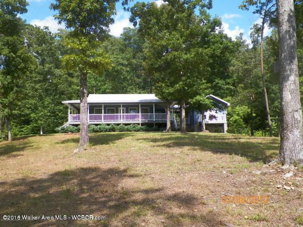 1202 Forest Service Rd., Arley, AL 35541 Photo 1