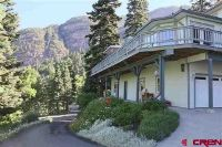 Home for sale: 333 Easy St., Ouray, CO 81427