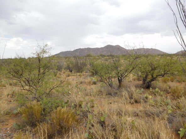 16705 S. Sierrita Mountain, Tucson, AZ 85736 Photo 29