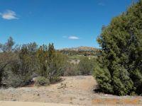 Home for sale: 15230 N. Four Mile Creek Ln., Prescott, AZ 86305