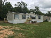 Home for sale: 1303 Persimmon Trace, Prattville, AL 36067