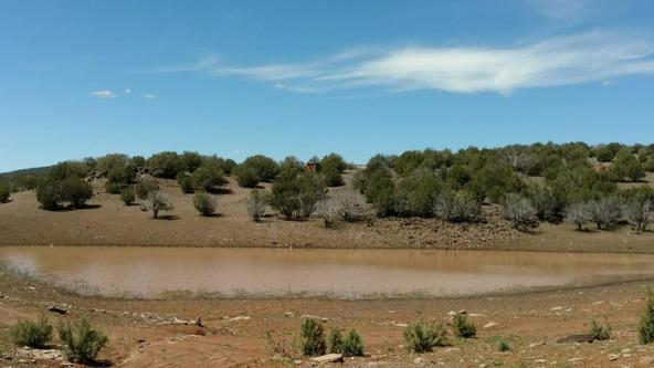 243 N. Juniperwood Ranch --, Ash Fork, AZ 86320 Photo 10