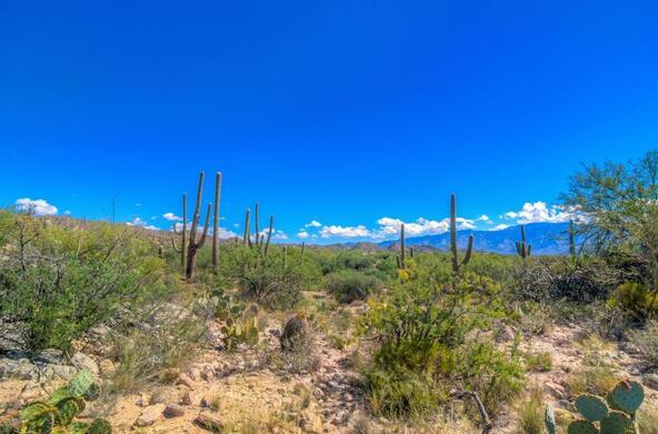1037 W. Tortolita Mountain, Oro Valley, AZ 85755 Photo 115