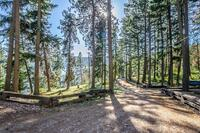 Home for sale: 272 E. Bear Crossing Rd., Harrison, ID 83833