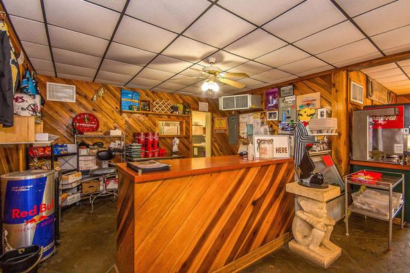 10277 County Rd. 34, Dadeville, AL 36853 Photo 14