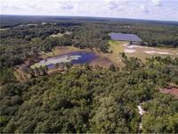 Home for sale: Sr44 Sr44, Eustis, FL 32736