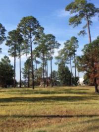 Home for sale: Lot 32 Cannon Branch Rd., Cordele, GA 31015
