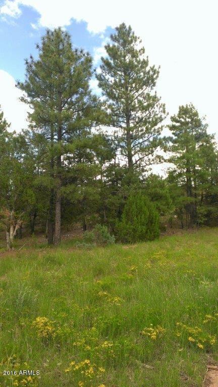 7205 Mogollon Trail, Happy Jack, AZ 86024 Photo 2