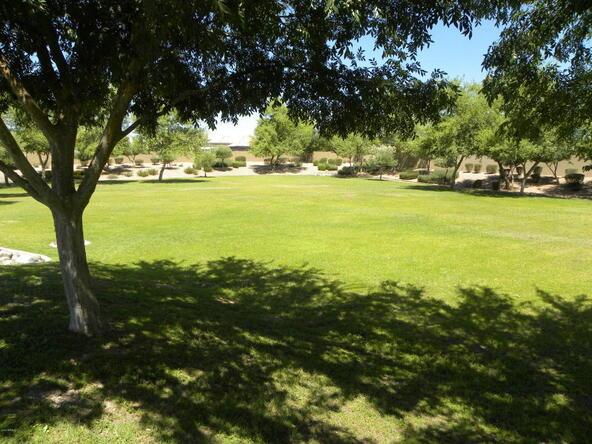 7560 N. 80th Ln., Glendale, AZ 85303 Photo 5