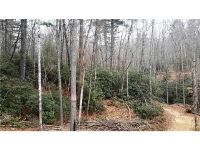 Home for sale: Tbd Fire Fly Ln., Hendersonville, NC 28739