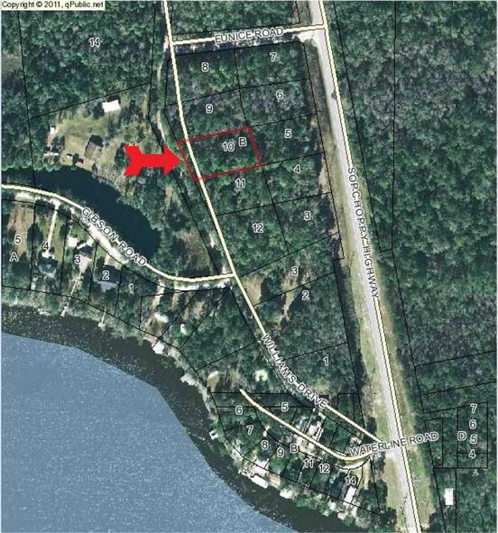 Lot 10 Williams Rd., Sopchoppy, FL 32358 Photo 1