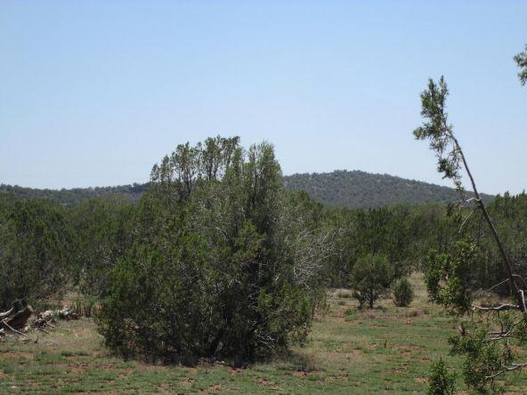 3328 N. Hillside Rd., Ash Fork, AZ 86320 Photo 47