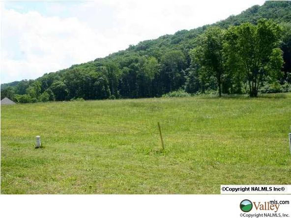 111 Lake Creek Dr., Guntersville, AL 35976 Photo 8