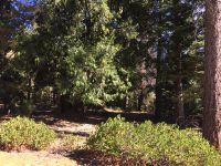 Home for sale: 216 Fox Crest Dr., Lake Almanor, CA 96137