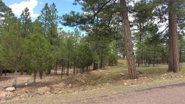 1470 Low Mountain Trail, Heber, AZ 85928 Photo 2