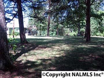 1172 County Rd. 639, Mentone, AL 35984 Photo 17