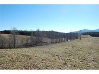 Home for sale: 19.97 Ac Rubin Wilson Rd., Mill Spring, NC 28756