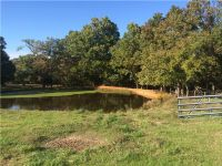 Home for sale: 11199 Fishback Rd., Gravette, AR 72736
