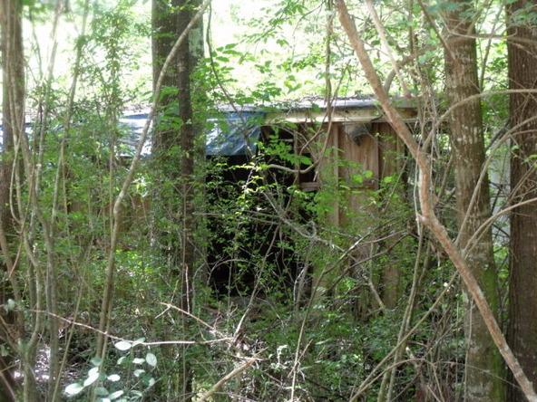 17311 County Rd. 9, Summerdale, AL 36580 Photo 6