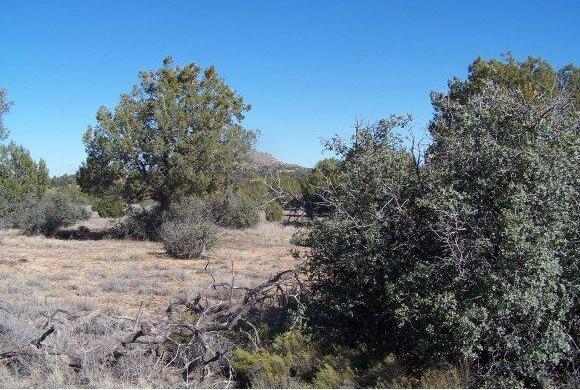 13450 N. Yaqui Dr., Prescott, AZ 86305 Photo 1