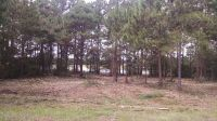 Home for sale: Lot 37 Lakeshore Rd., Pelham, GA 31779