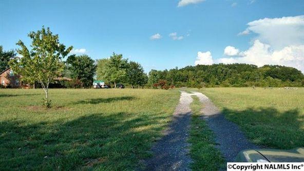 815 County Rd. 377, Hillsboro, AL 35643 Photo 6