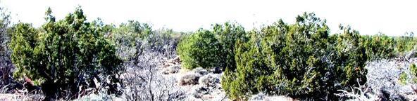 3894 Valley Rd., Snowflake, AZ 85937 Photo 5